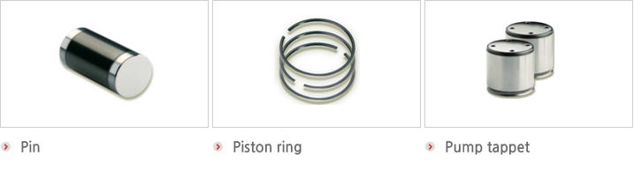 Pin, Piston ring,Pump tappet